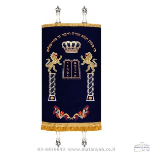 Lions The Tablets Torah Cover