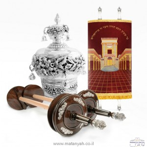 Silver set - Sefer Torah accessories at a discounted price !