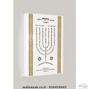 Menorah Lamnatzeach board alight