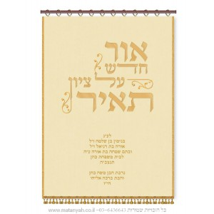 "Calligraphy ""Or chadash al Tzion Tair"" Parochet w/ Ornaments"