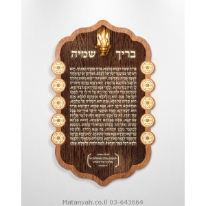 Barich Shmey  Board - Solomon's Shield